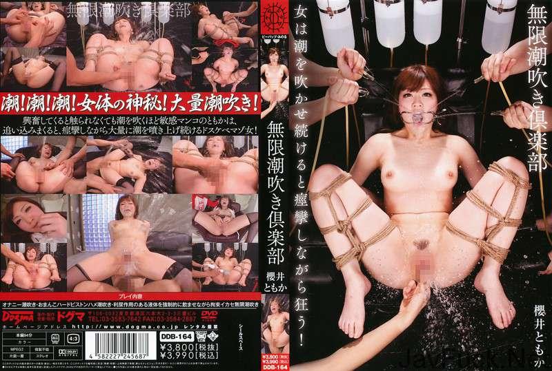 [DDB-164] 無限潮吹き倶楽部 櫻井ともか ドグマ 2011/05/19