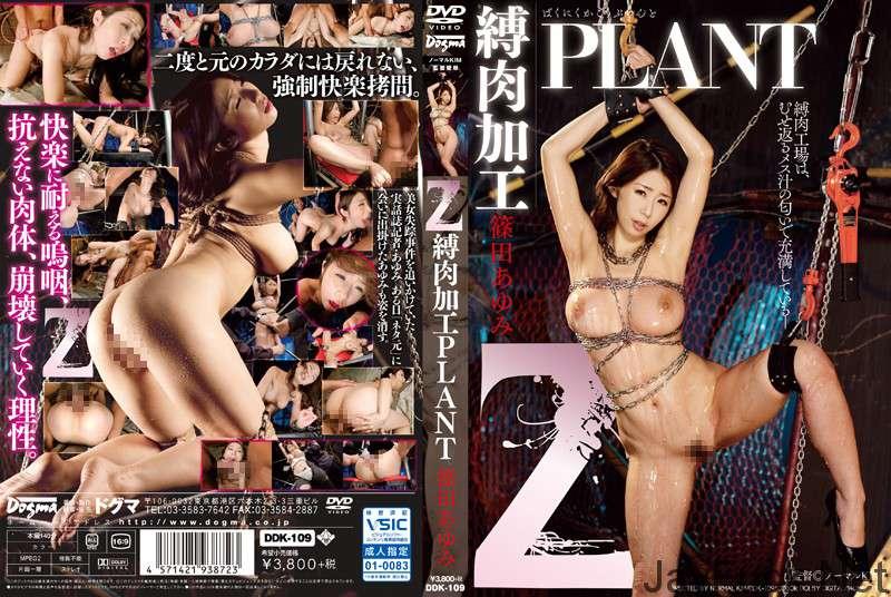 [DDK-109] Z 縛肉加工PLANT 篠田あゆみ 巨乳 Restraint SM