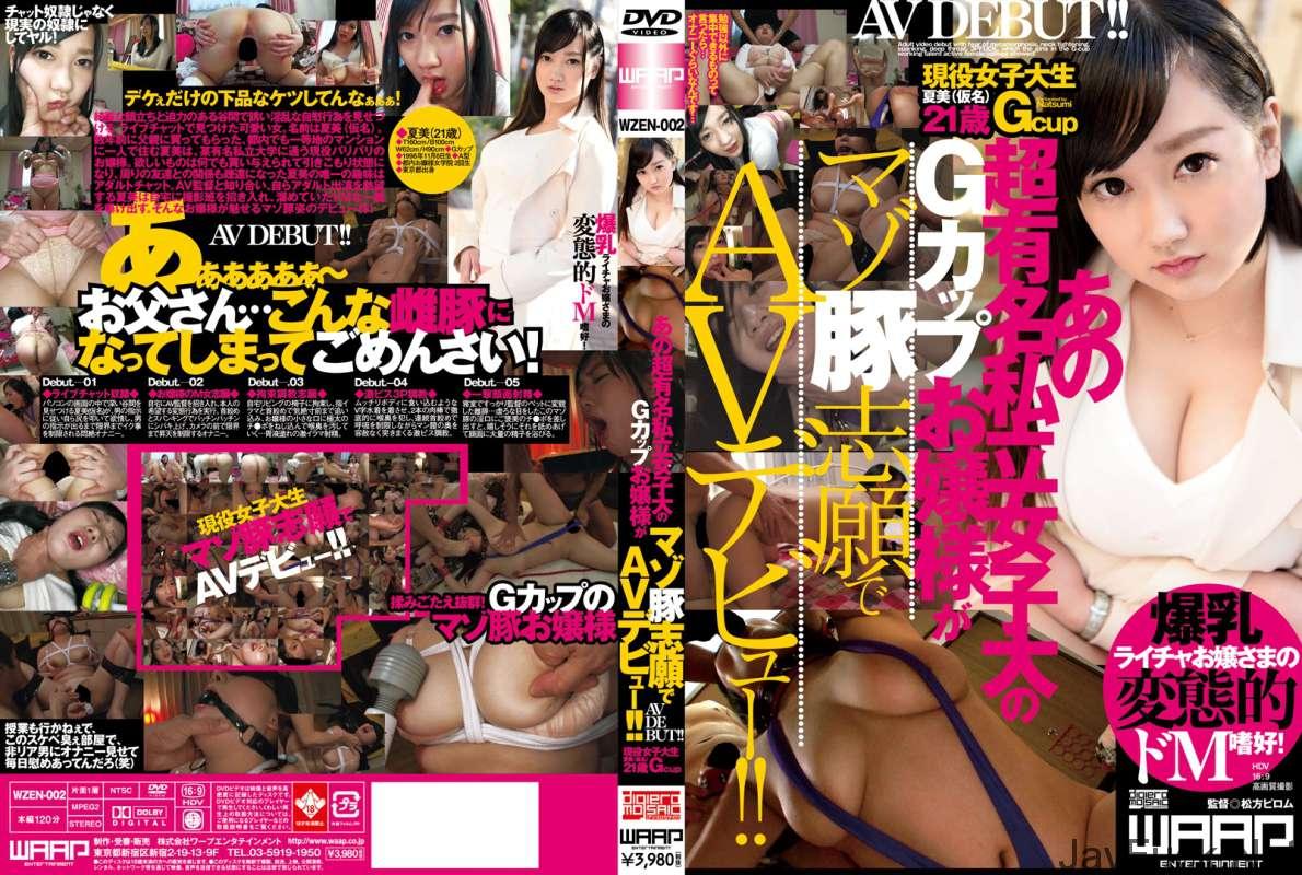 [WZEN-002] あの超有名私立女子大のGカップお嬢様がマゾ豚志願でAVデビュー... Actress Rape 120分 Schoolgirls