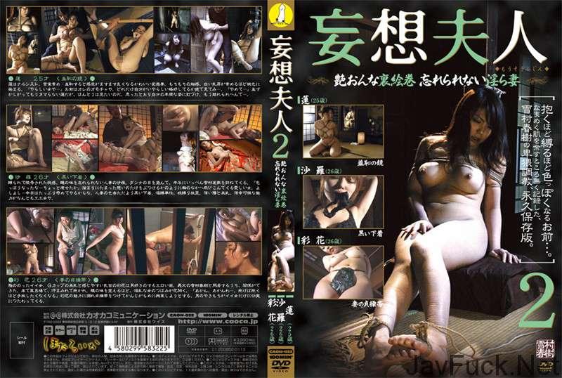 [CAOH-022] 妄想夫人 2 Rape おっぱい Torture Boobs 企画