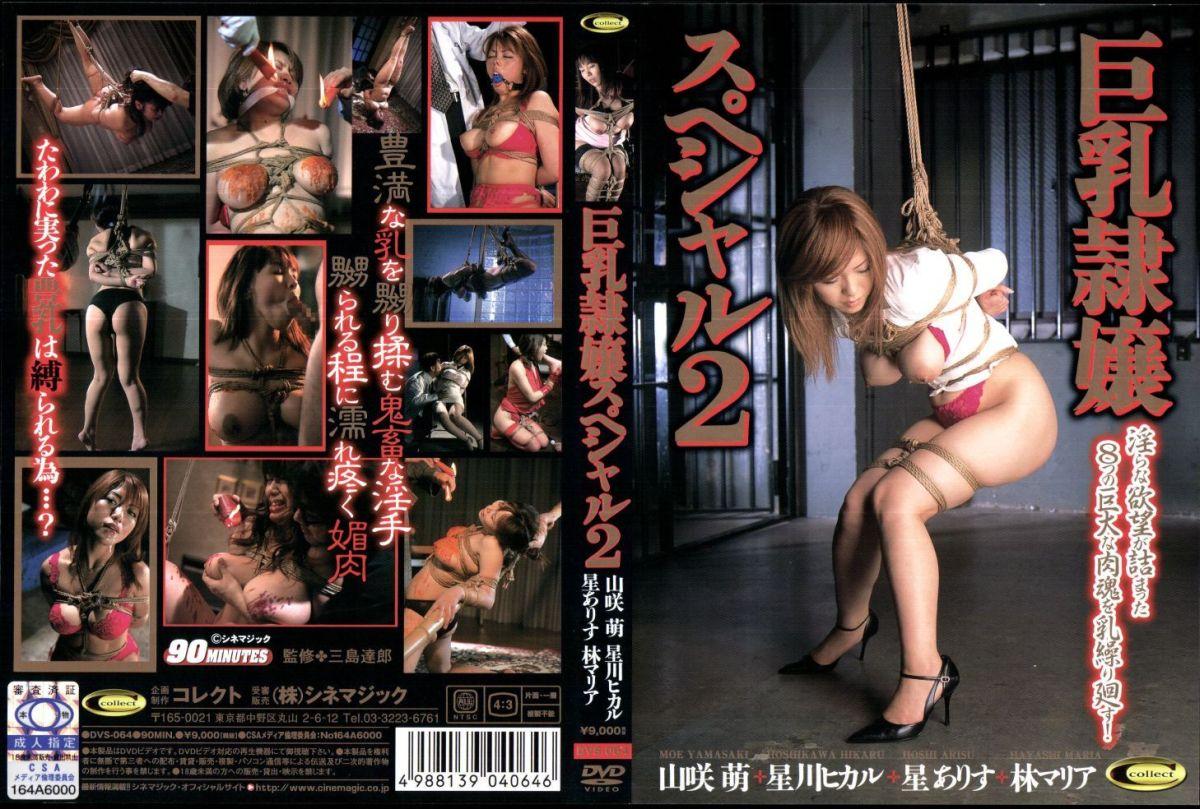 [VS-064] 巨乳隷嬢スペシャル 2 90分 その他SM SM 2006/10/27