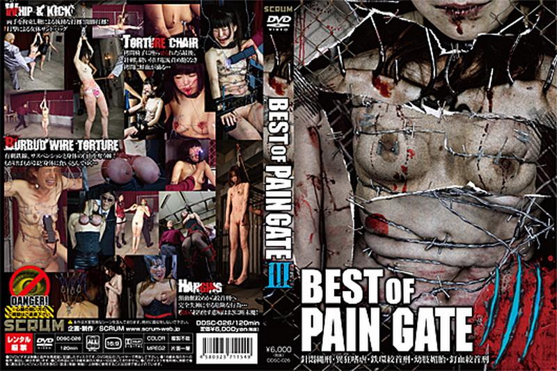 [DDSC-026] BEST OF PAIN GATE 3 拷問・ピアッシング スクラム スパンキング・鞭打ち