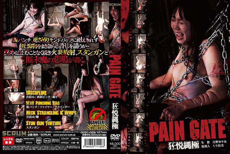 [DDSC-028] PAIN GATE 狂悦縄極 月野ゆりあ スレンダー Humiliation 電流ゲロ
